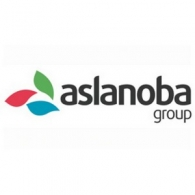 Aslanoba Group